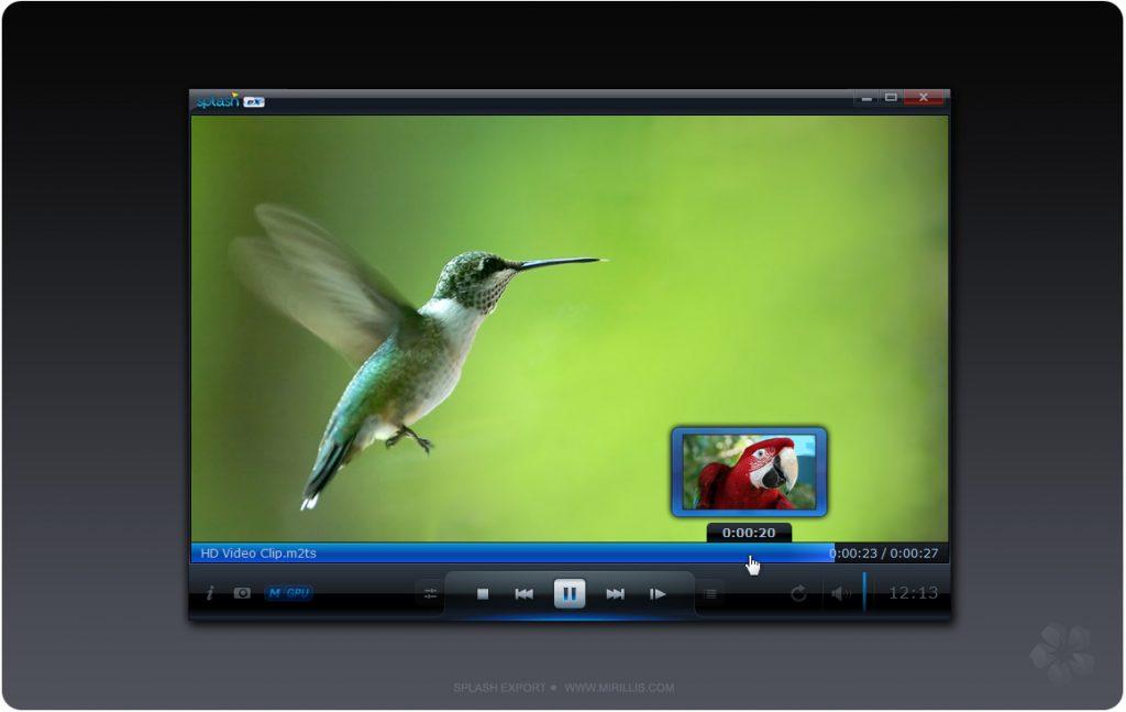 Mirillis Splash Pro full download