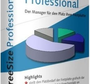 TreeSize Professional