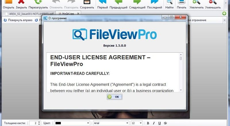 file view pro serial number