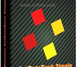 GetDataBack Simple Logo